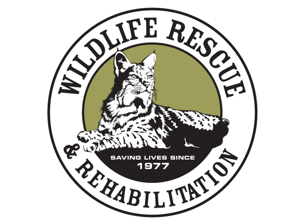 Wildlife Rescue & Rehabilitation logo
