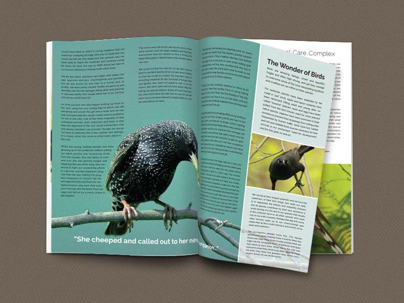 Wildlife Rescue & Rehabilitation print newsletter