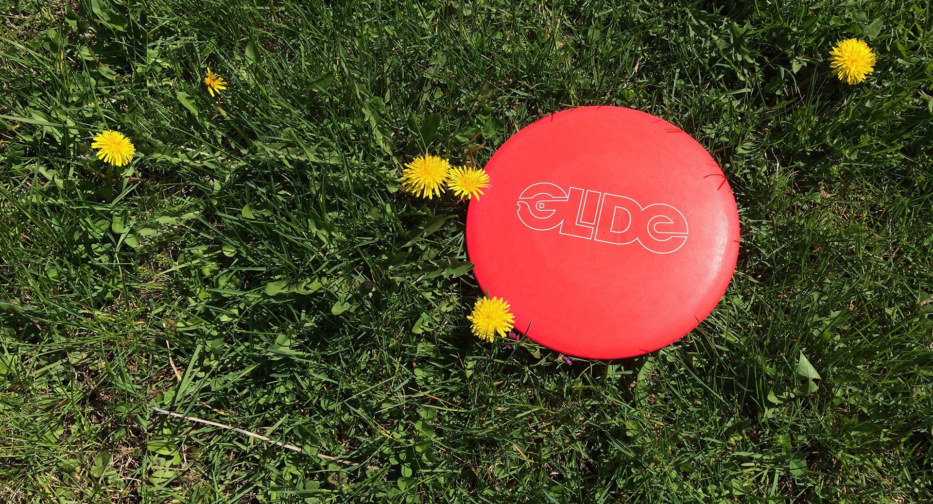 An example of brand identity design for Glide. The photo shows a disc golf disc laying on the ground with the new Glide logo printed on it, which was created by Phonographik Design Studio