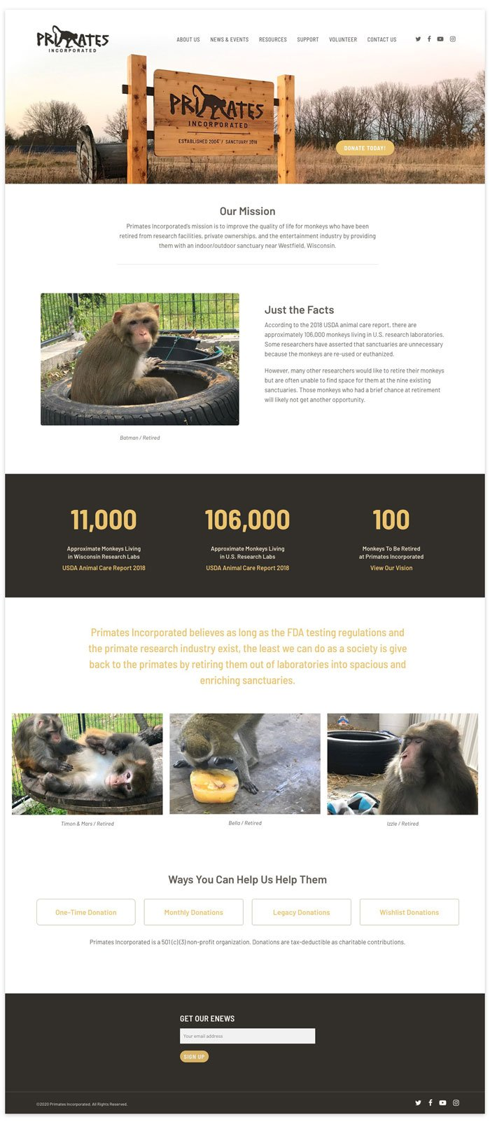 Primates Incorporated website home page layout